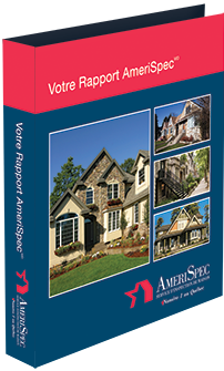 The Home Inspection Report